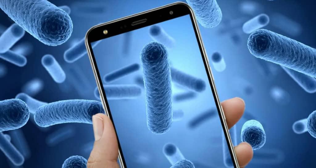 smartphone bactéries