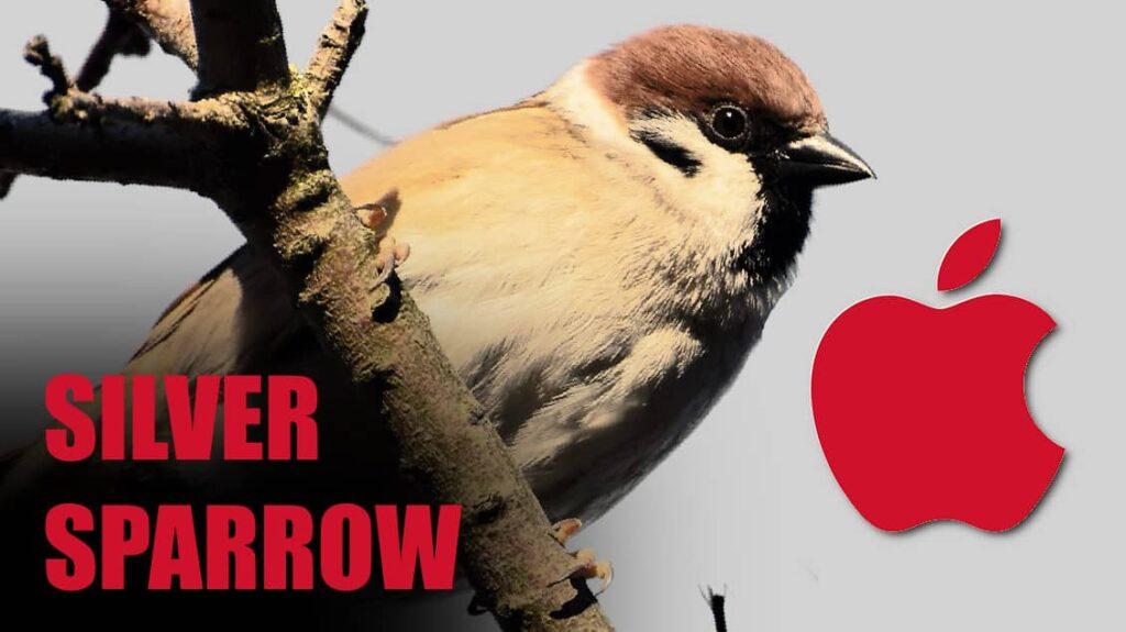 Silver Sparrow Mac