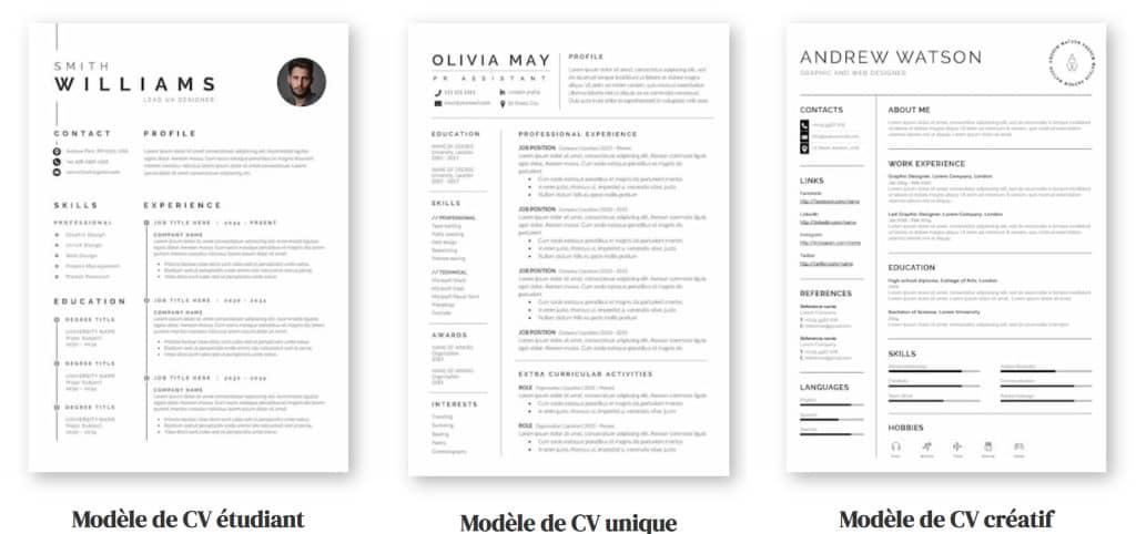 modèles de cv : exemples